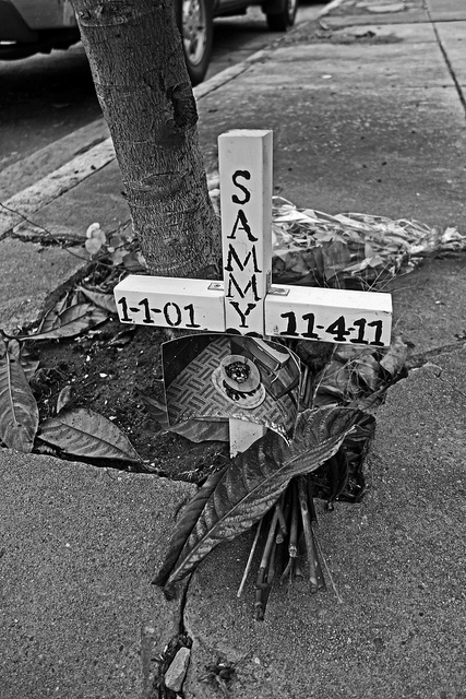 petmemorial12112012