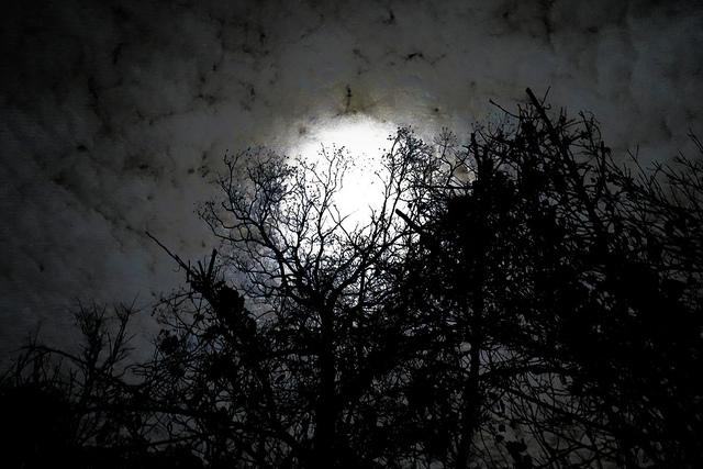 moonbehindclouds212013